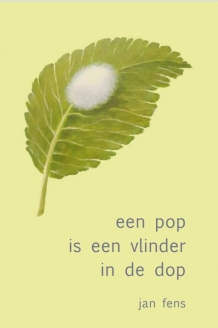 EEN POP IS EEN VLINDER IN DE DOP